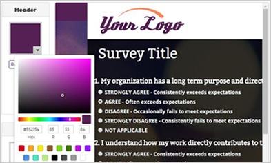Screen cap of customizing your survey